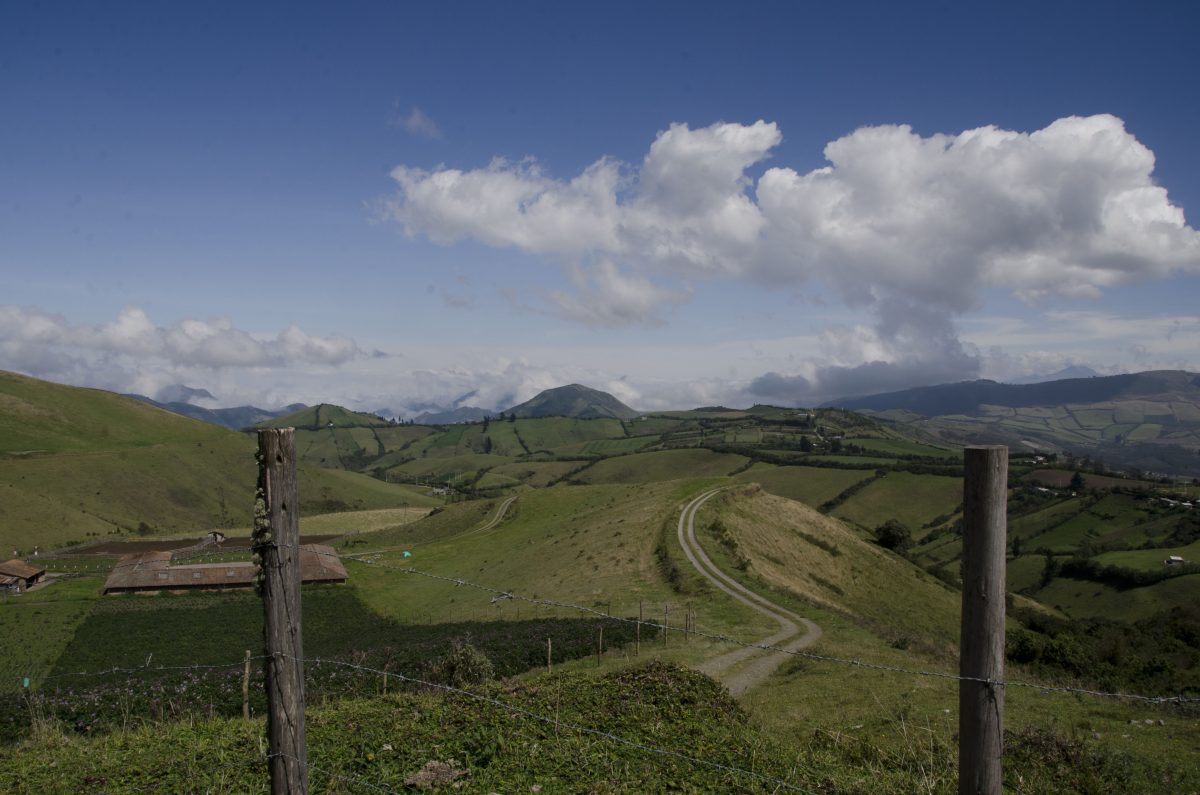 On the way to the Yanacocha Reserve, Pichincha, Ecuador