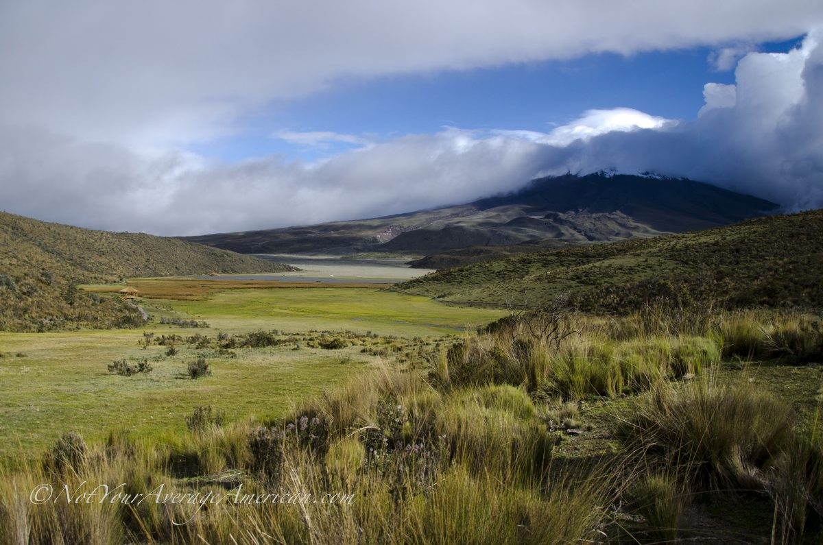 Limpiopungo – Wetlands at Cotopaxi National Park