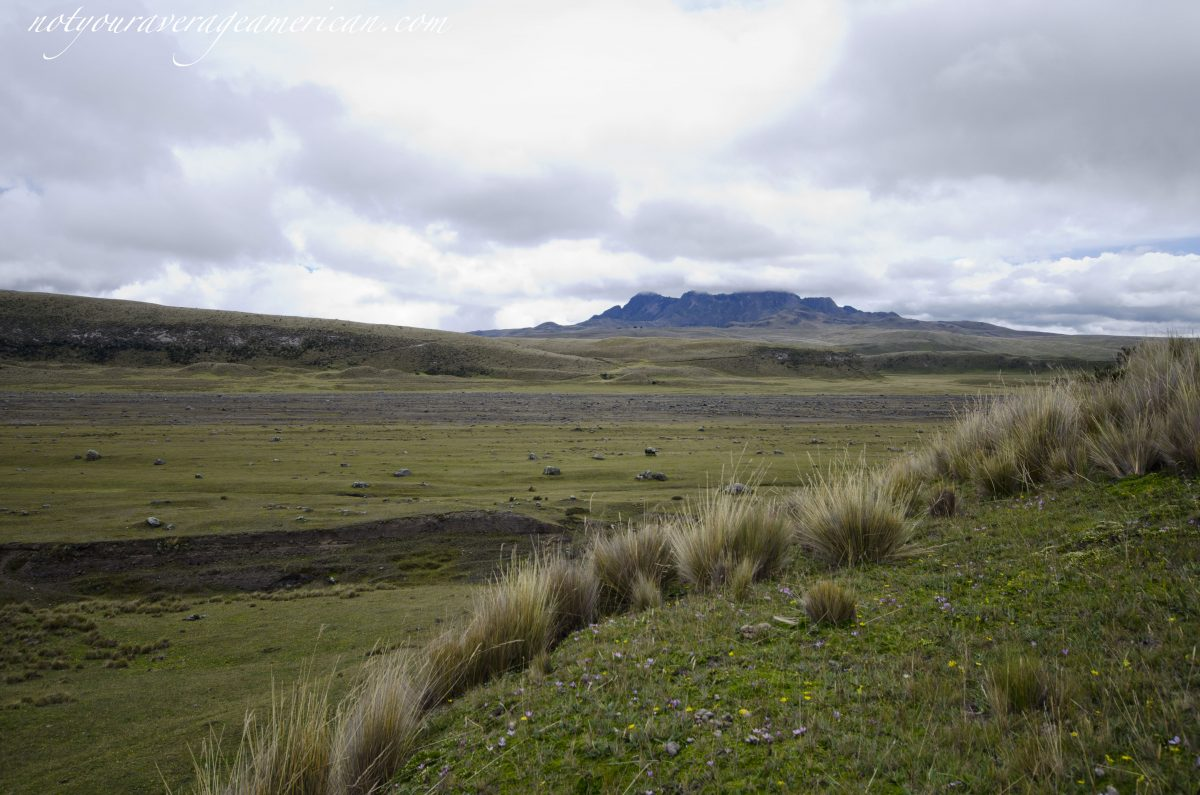 Ancient lahar flow in the distance, Pucara Salitre, Cotopaxi National Park, Ecuador
