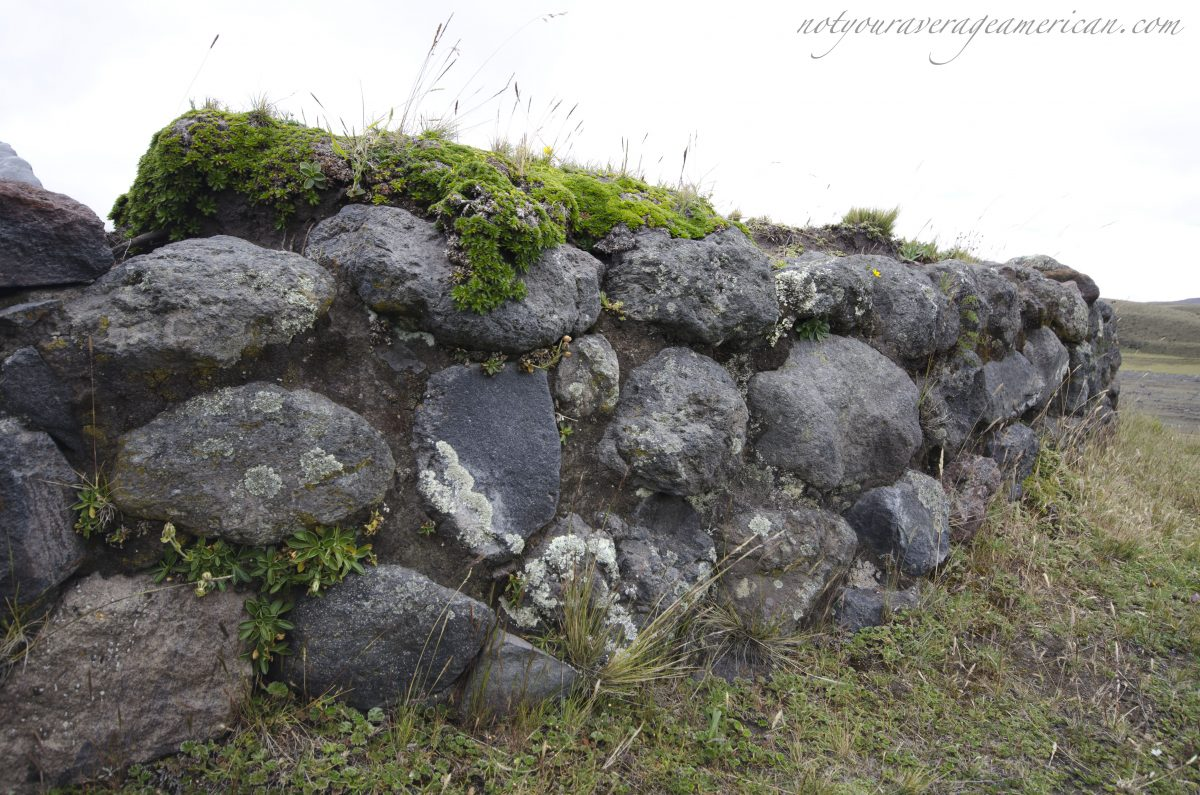Detail of the stone wall on the north side, Pucara Salitre, Cotopaxi National Park, Ecuador