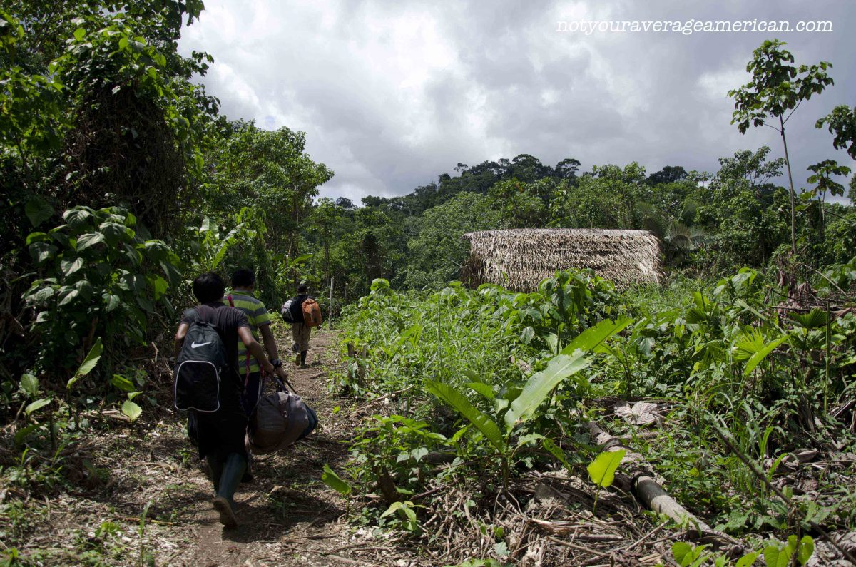 Walking from the runway towards the river, Huaorani Lodge