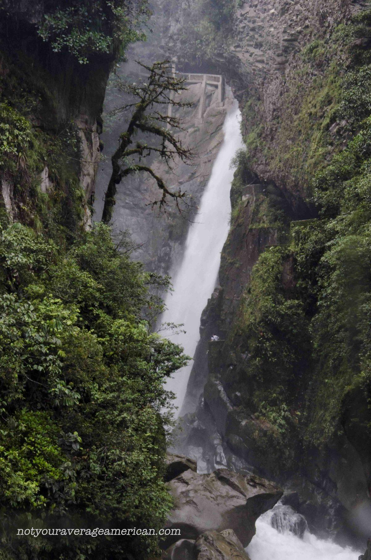 The lone tree, Pailón del Diablo, Baños, Ecuador