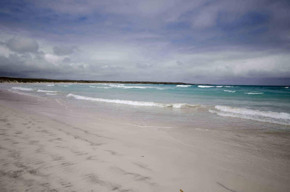 Hiking to Tortuga Bay in the Galapagos Islands
