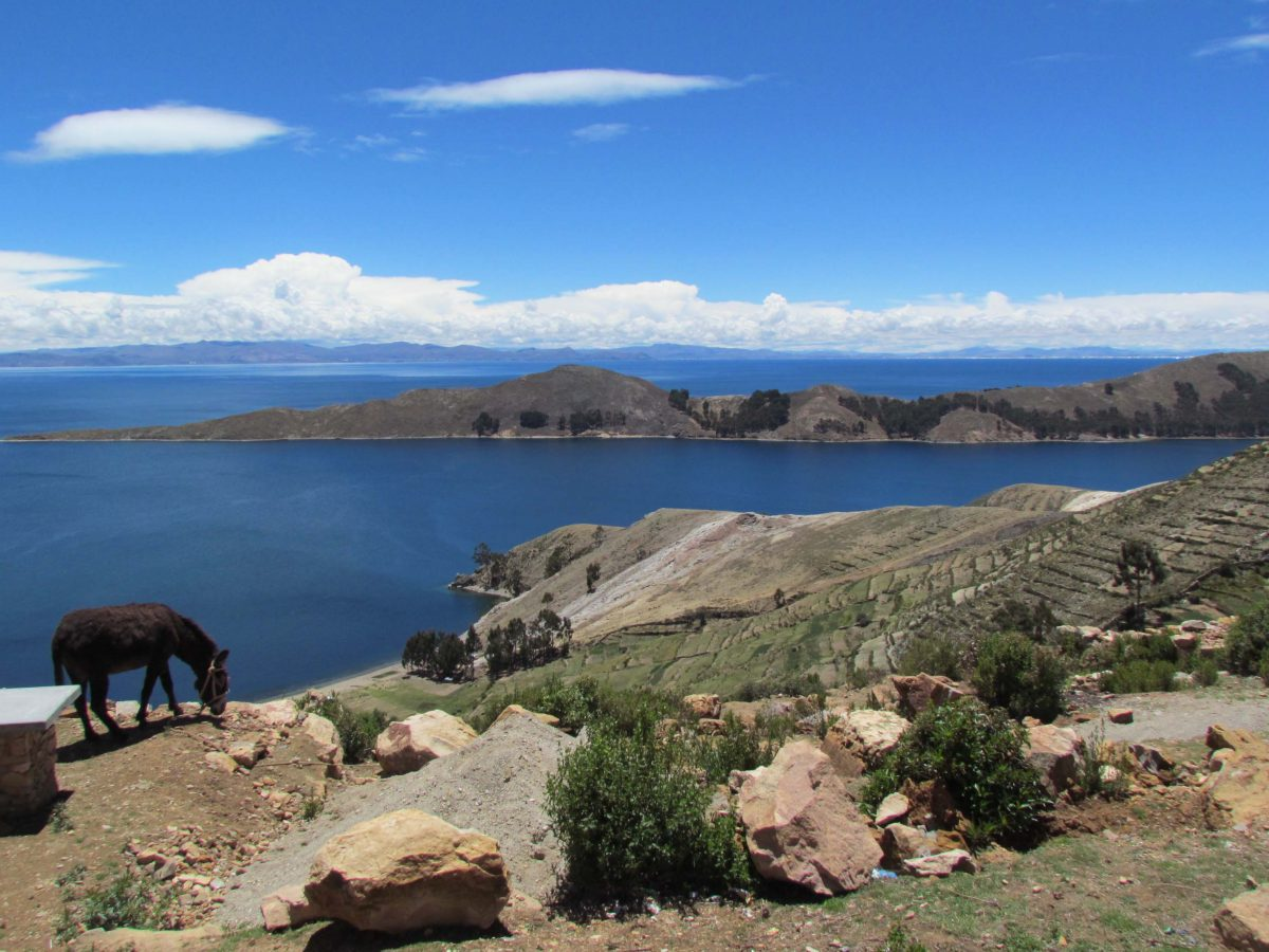 View of Lake Titicaca from the far side of Inti Wata | ©Angela Drake
