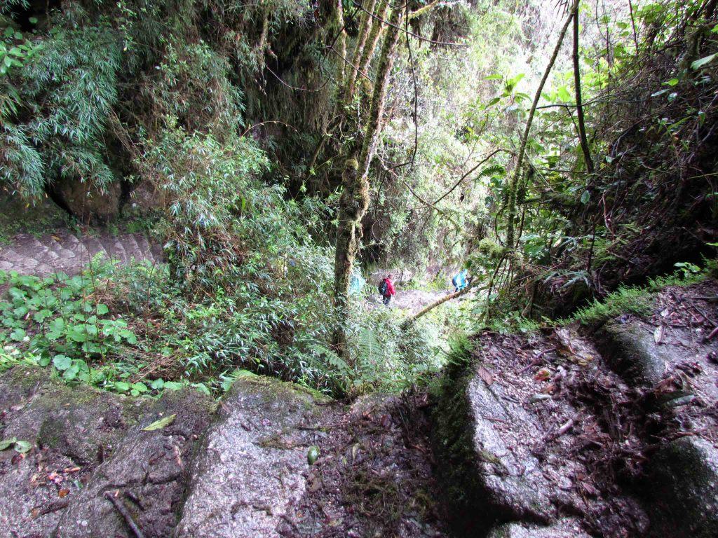Steps Around the Intipata Site