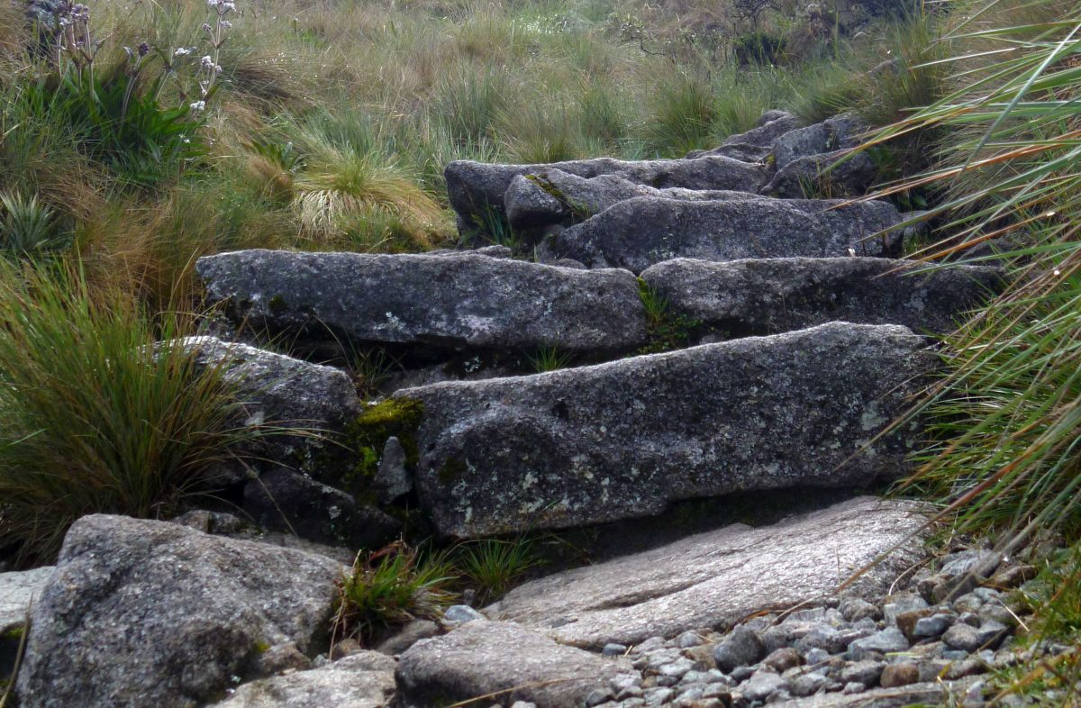 Steps on the Inca Trail | ©Angela Drake