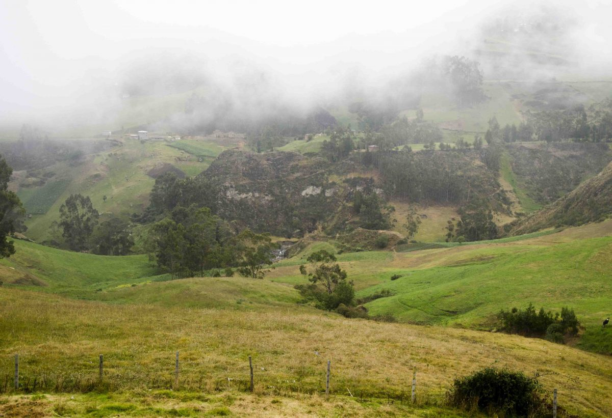 Early Morning Fog, The Posada Ingapirca, Cañar Province, Ecuador