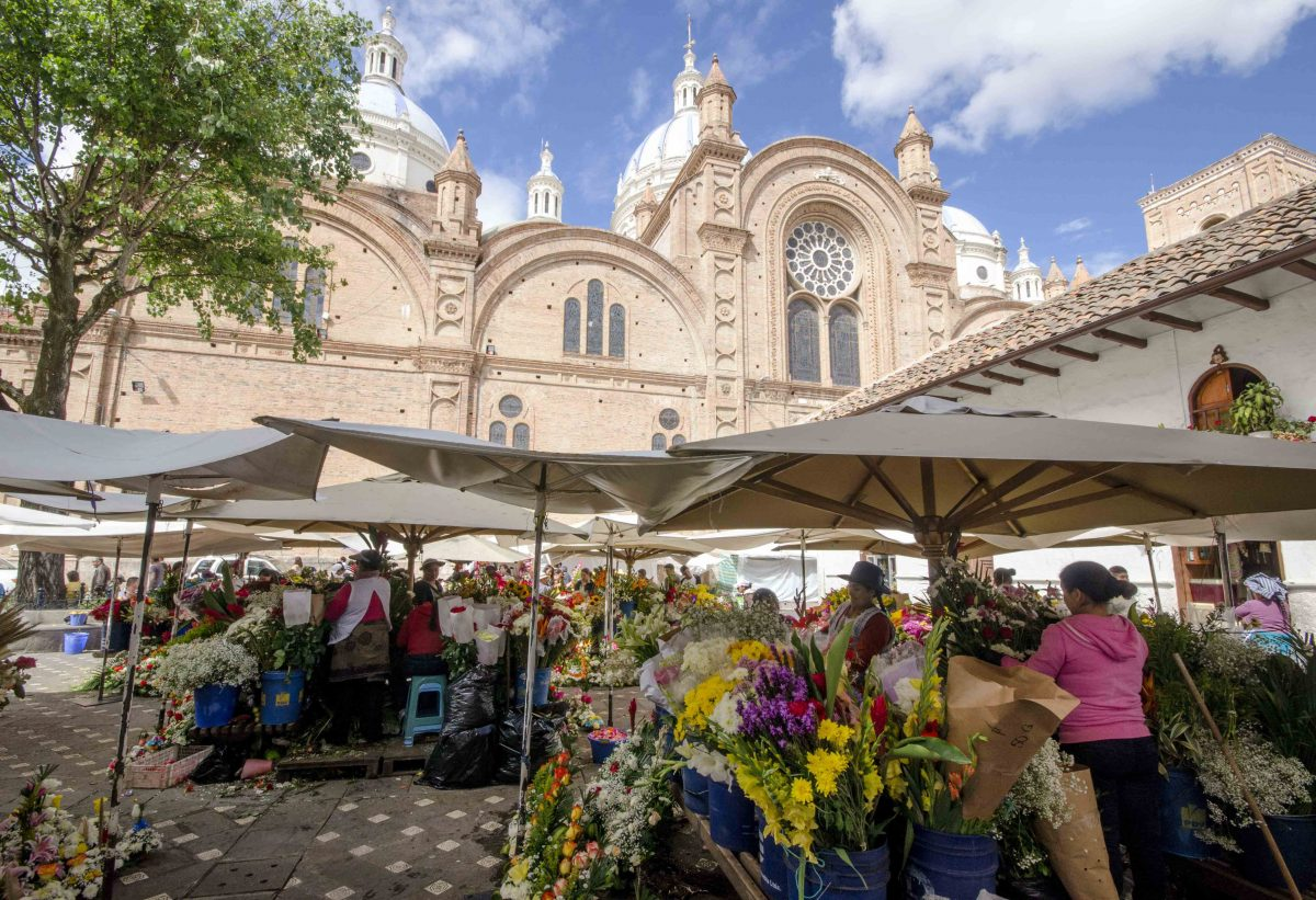 The New Cathedral from the Flower Market, Cuenca, Ecuador