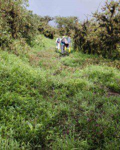 Trail up Sierra Negra
