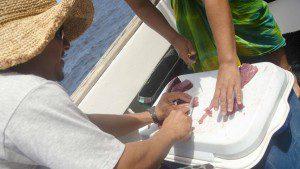 Dicing Fresh Tuna