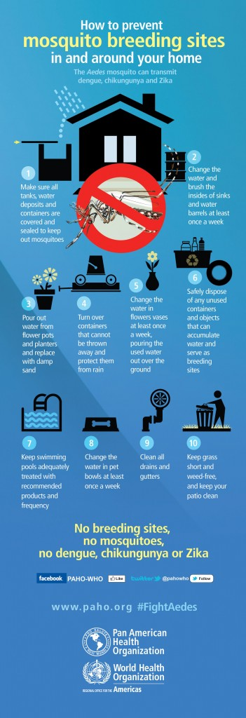 Mosquito Breeding Infographic, http://www.paho.org/