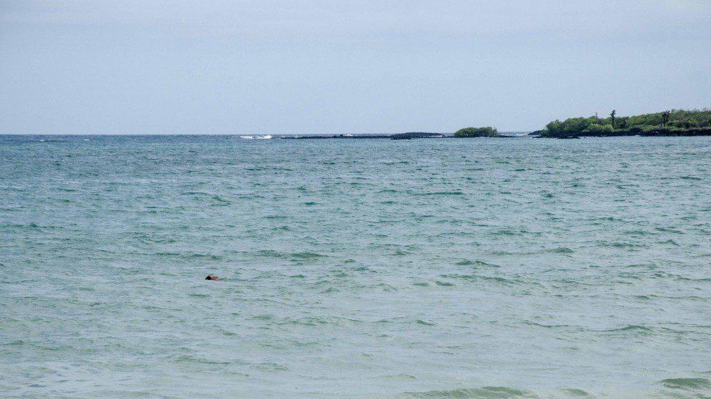 The Ocean at El Garrapatero