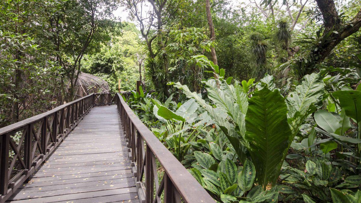 Walkway through the Zoo, Parque Histórico, Guayaquil, Ecuador