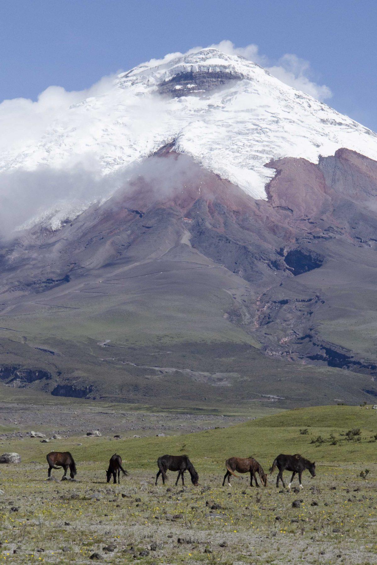 Provincia de Cotopaxi, Ecuador Por Mis Ojos