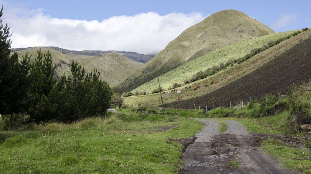 Backroad, Ilinizas Ecologic Reserve