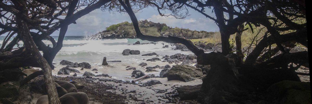 Puerto Chino, San Cristobal
