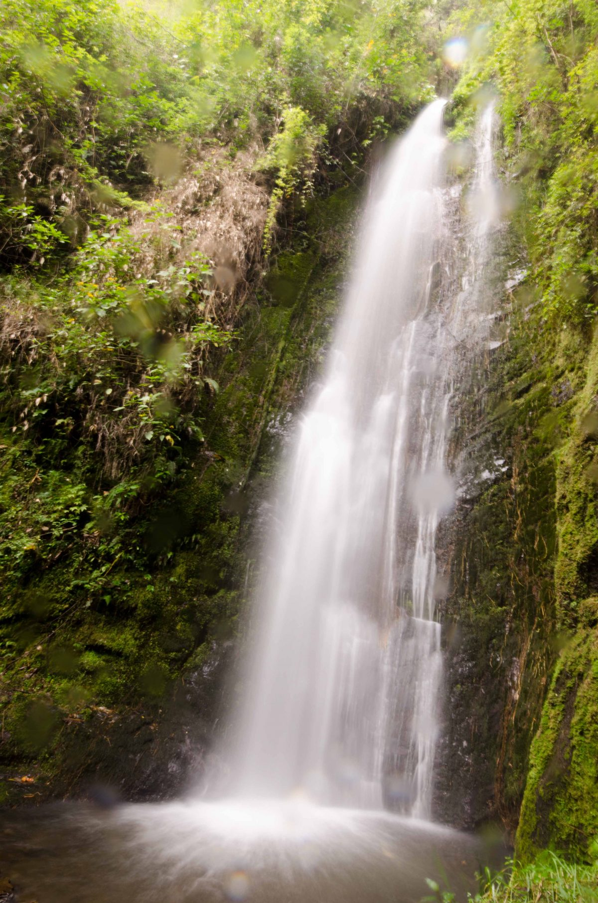 Cascada del Palto, Loja Province, Ecuador