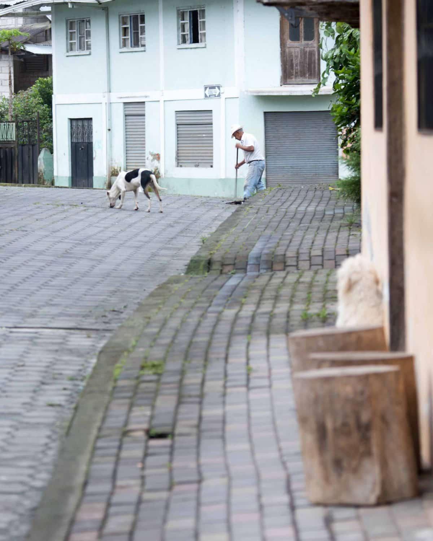Sweeping the Street, Pacto, Ecuador