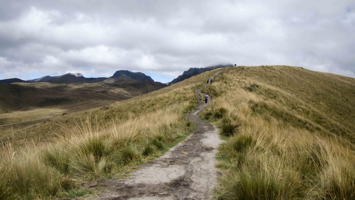The Trail, Hiking Pichincha, Quito, Ecuador | ©Angela Drake