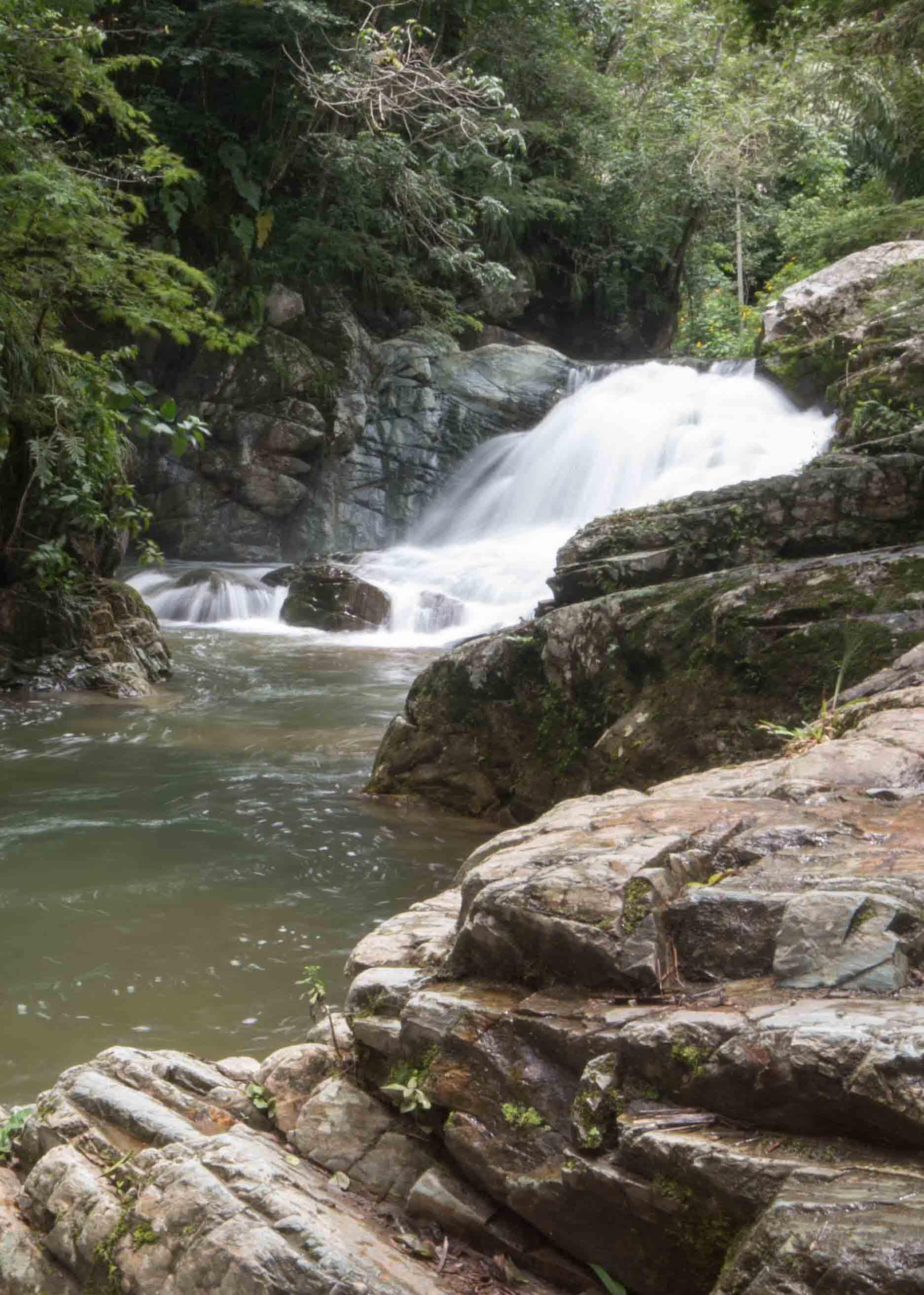 Cascada Gallo de la Peña, Pacto, Ecuador