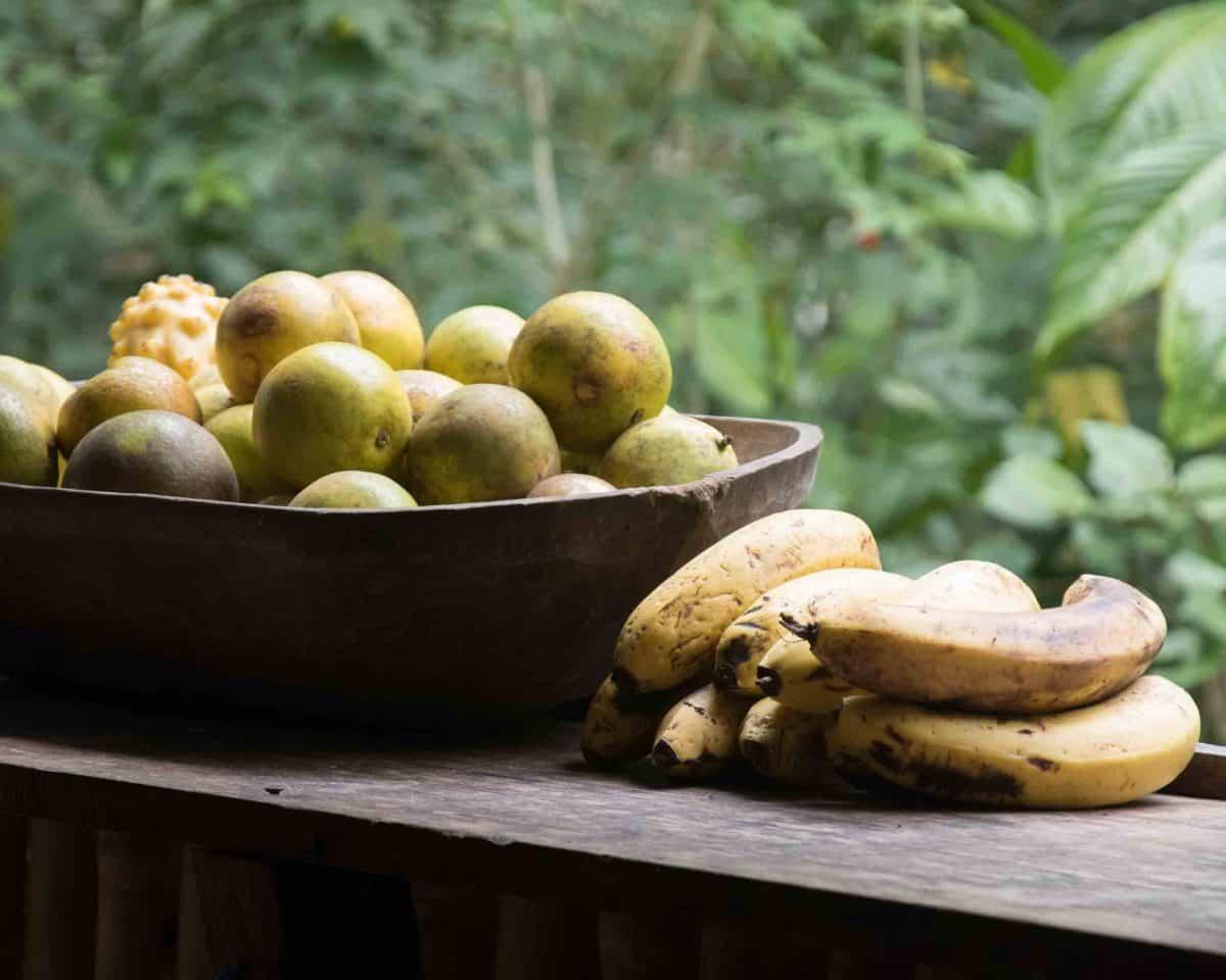Fresh fruit for sale, along the trail, Cascada Gallo de la Peña, Pacto, Ecuador
