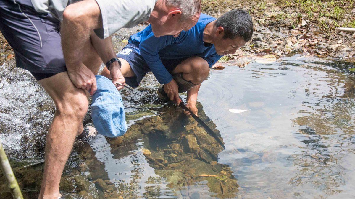 Looking for crayfish, Cascadas Yanayacu, Napo Province, Ecuador