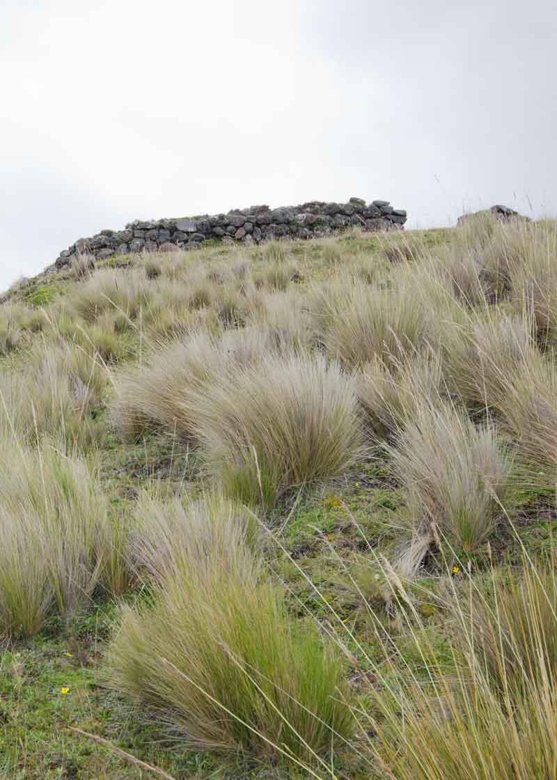 Pucara Salitre, Cotopaxi National Park, Ecuador