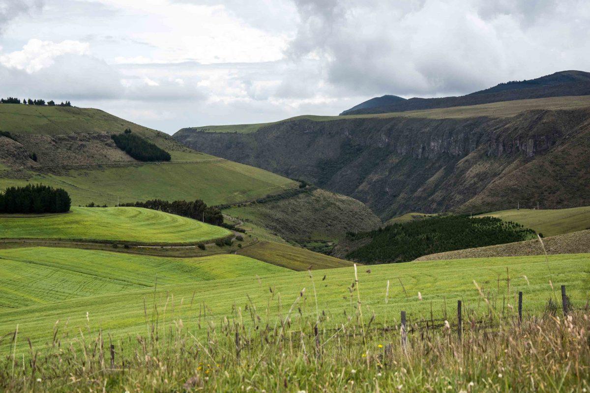 Farmland near the Antisana Conservation Area | ©Angela Drake