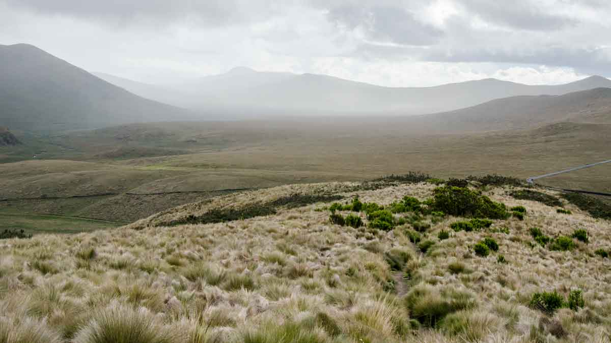 Hills in the Antisana Conservation Area | ©Angela Drake