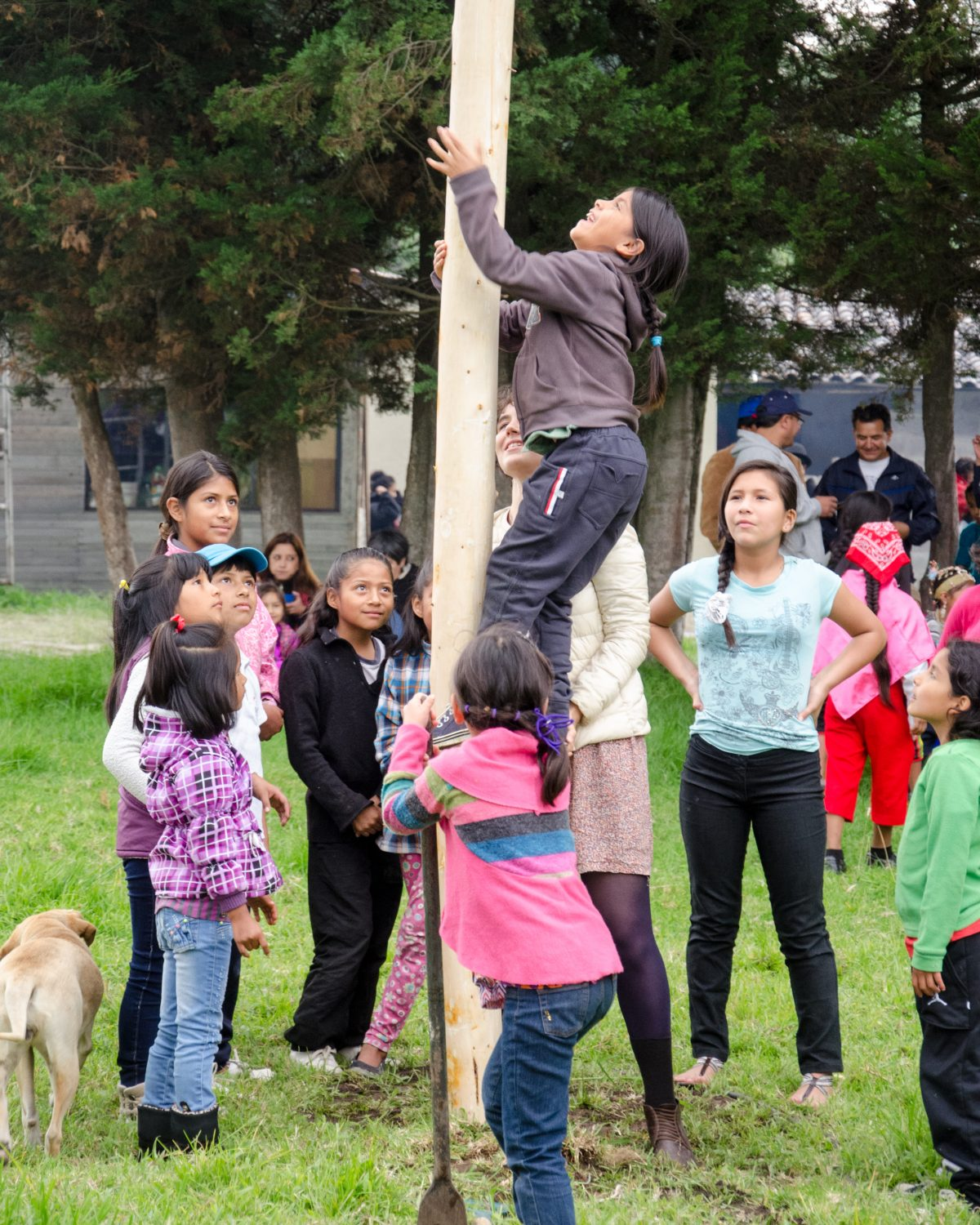 Climbing the Food Tree, Kapak Raymi, Quito, Ecuador | ©Angela Drake / Not Your Average American