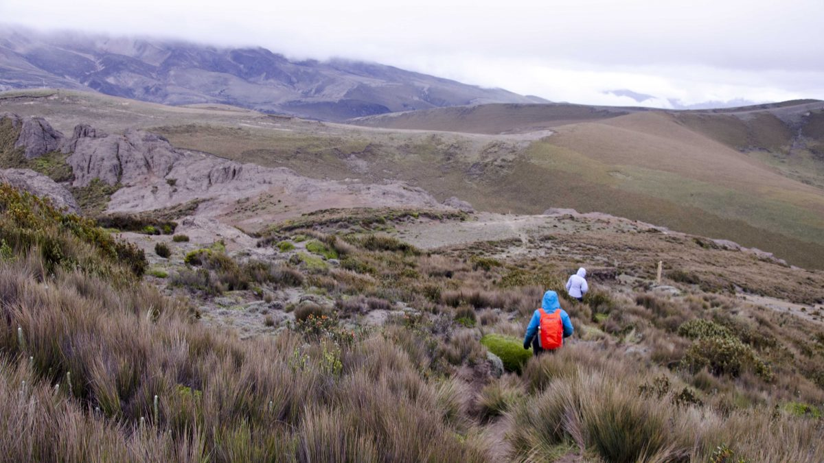 Polylepis Trail, Chimborazo Wildlife Reserve, Ecuador   ©Angela Drake / Not Your Average American