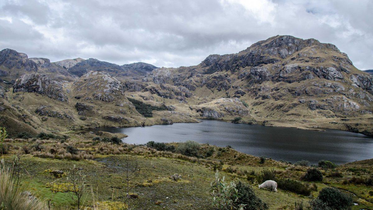 Cajas National Park, Ecuador | © Angela Drake