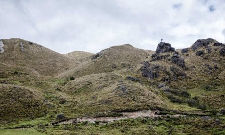 The Beauty of Cajas National Park