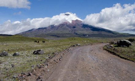 Tour Cotopaxi Like A Local
