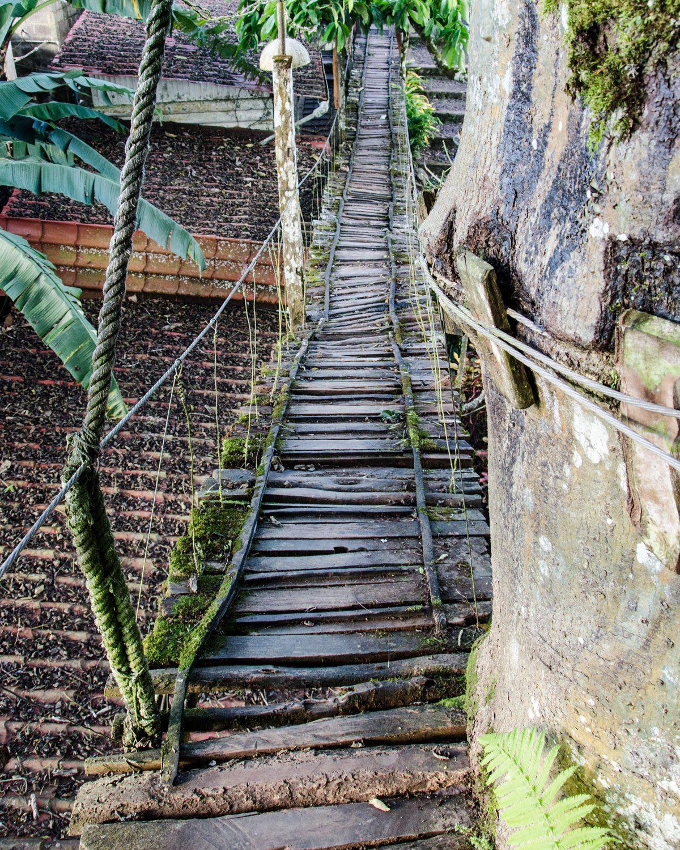The Bridge up to the Treehouse in the Galapagos Ceibo, San Cristobal, Ecuador | ©Angela Drake