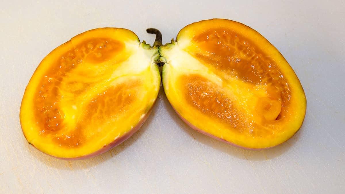 Tree Tomatoes, also called Tamarillo | © Angela Drake