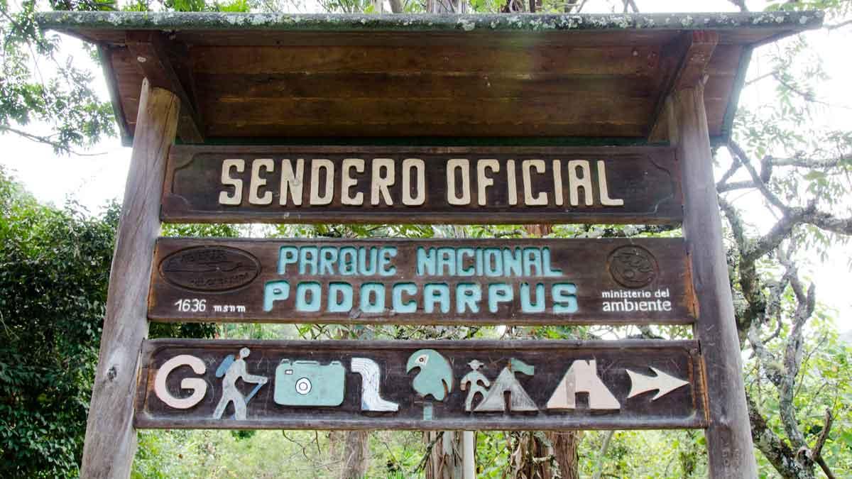 Cascada El Palto Trailhead, Podocarpus National Park, Vilcambamba, Ecuador | ©Angela Drake