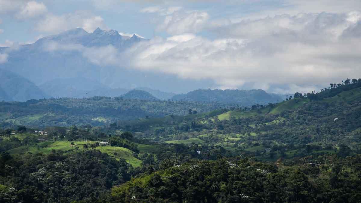 The Pichincha Volcano seen from the Sol y Montaña experimental coffee farm in Gualea, Ecuador | ©Angela Drake