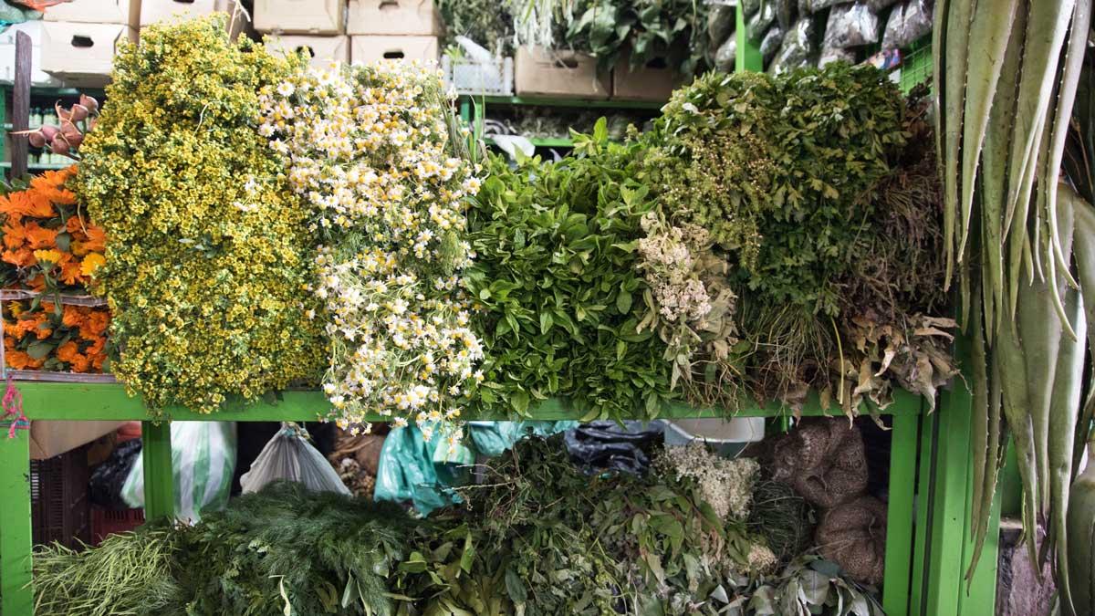 Fresh Herbs from the Plaza Mercado de Paloquemao | ©Angela Drake
