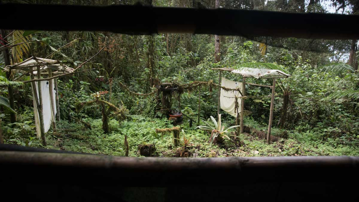 Birdwatching Blind, Birdwatcher's House, Santa Rosa de Mindo, Ecuador | ©Angela Drake