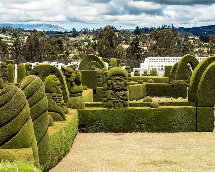 New Growth in the Memorial Park, Tulcan Cemetery, Ecuador | © Ernest Scott Drake