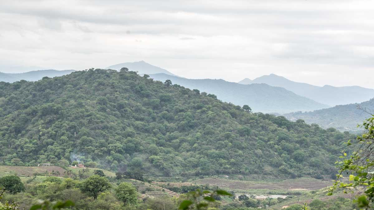 Looking towards Peru from the Jorupe Reserve, Macará, Ecuador   @Angela Drake