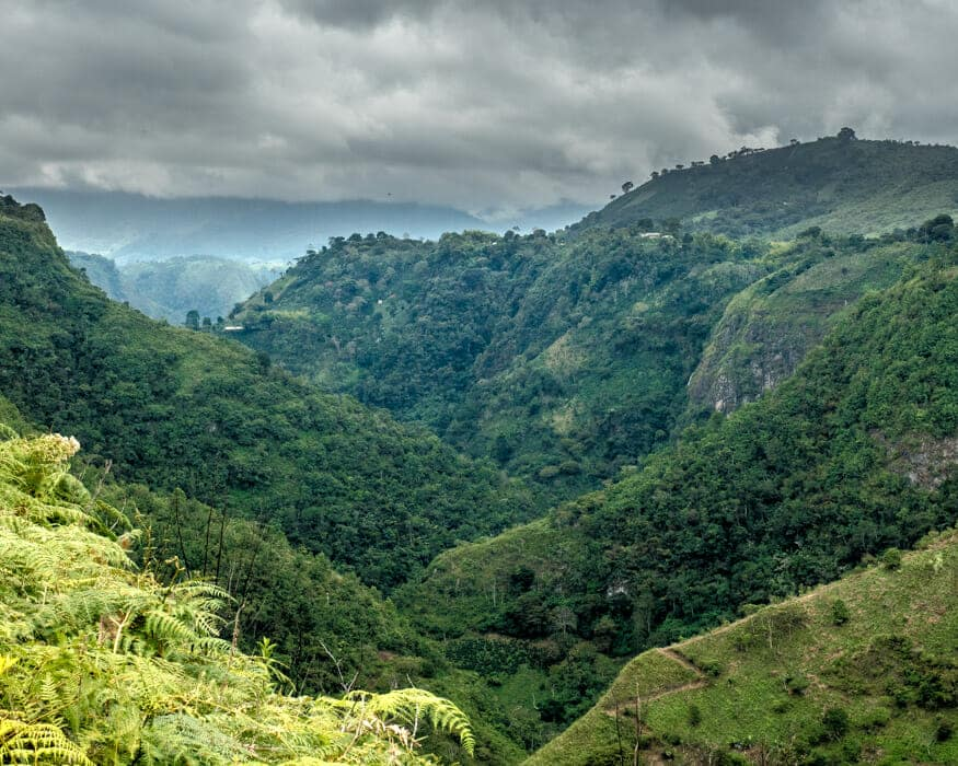 The view from La Chaquira, San Agustin, Colombia   ©Ernest Scott Drake