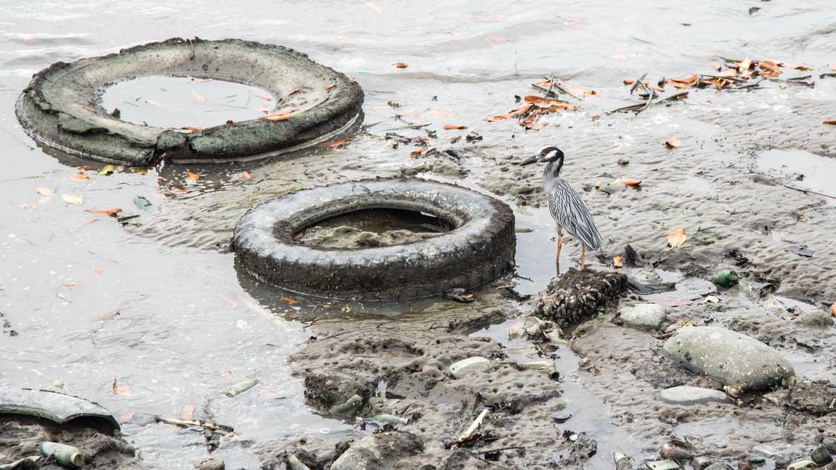 Garbage on the Seashore at Puerto Bolivar, Ecuador | ©Angela Drake