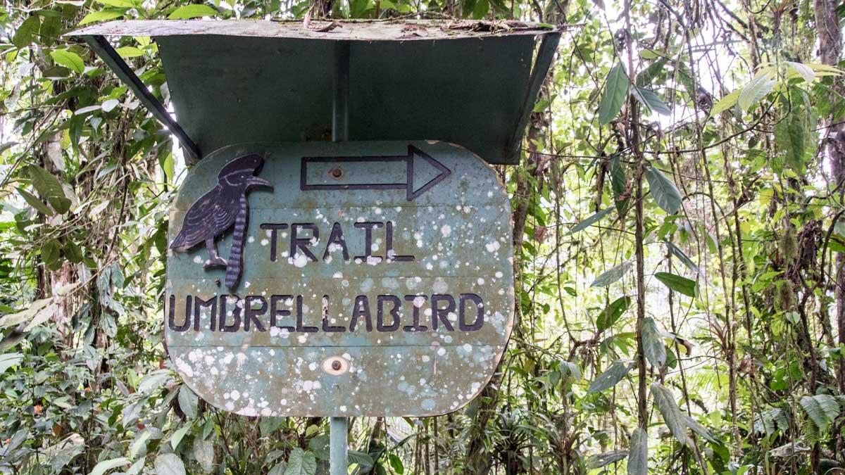 Sign to the Umbrellabird Trail, Buenaventura Reserve, Ecuador | ©Angela Drake
