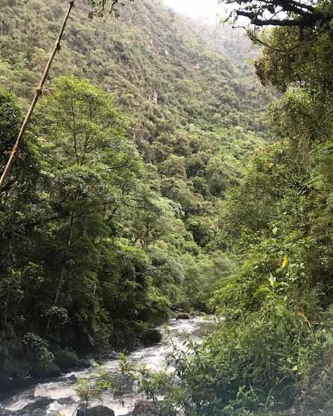 Rio Pisque, Imbabura, Ecuador   ©Becky Wandell