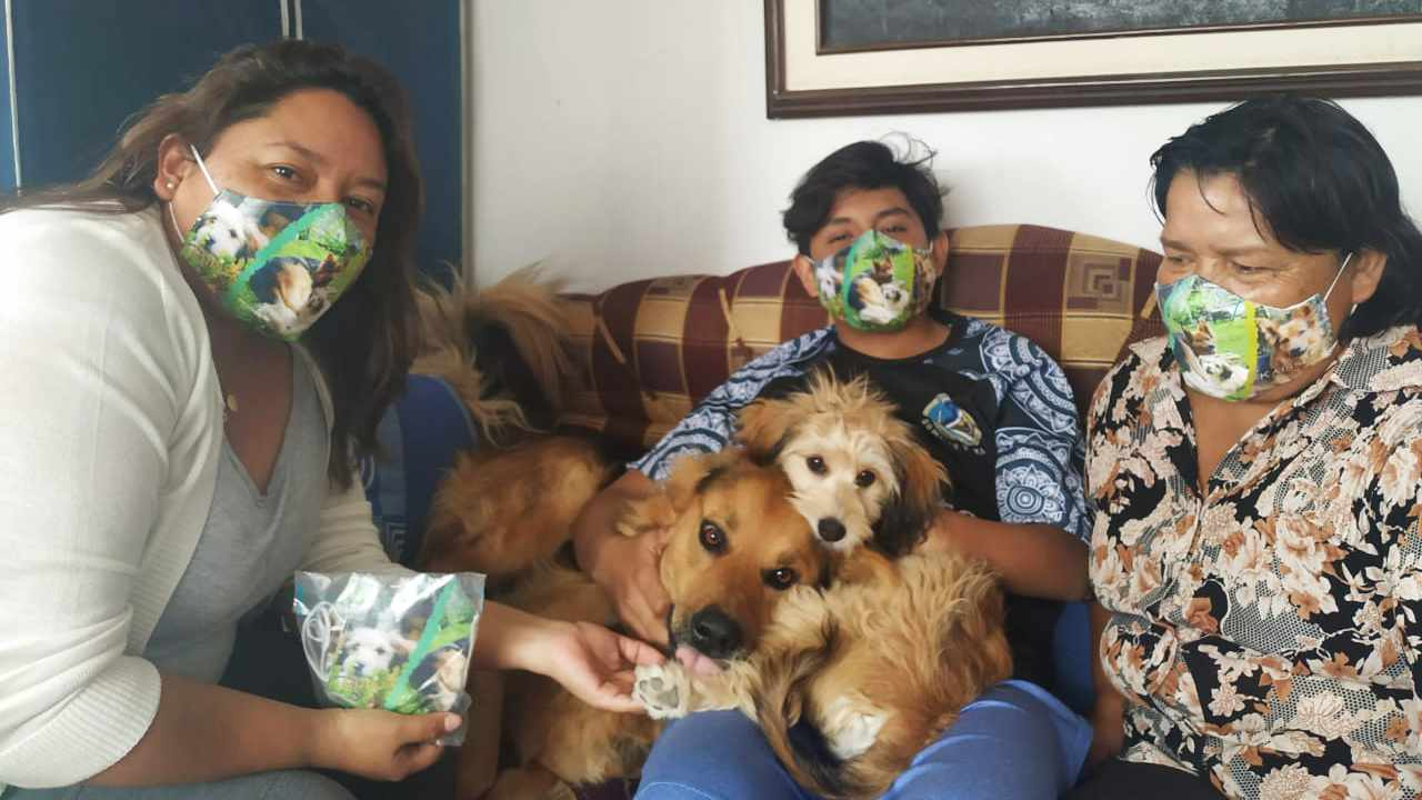 The family pets' photo on a Face Mask!