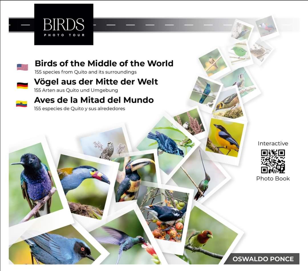 Aves de la Mitad del Mundo  ©Oswaldo Ponce
